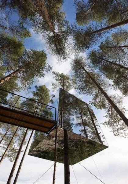 Cabane arbre luxe cube miroir aurores boreales
