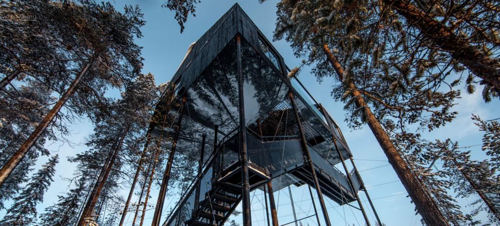 Tree house aurores boreales luxe hôtel
