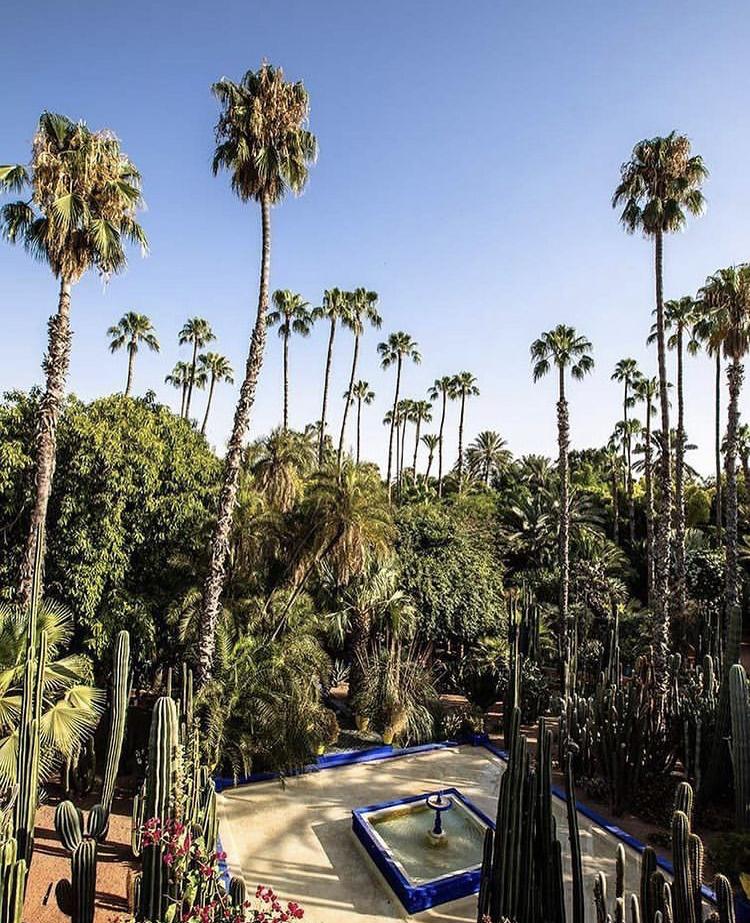 Le Musée Yves Saint Laurent Marrakech Jardin